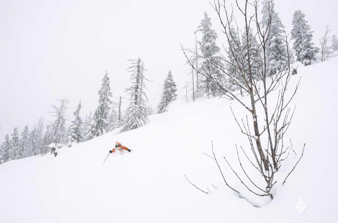 Photo d'un skieur un jour de poudreuse dans les Alpes