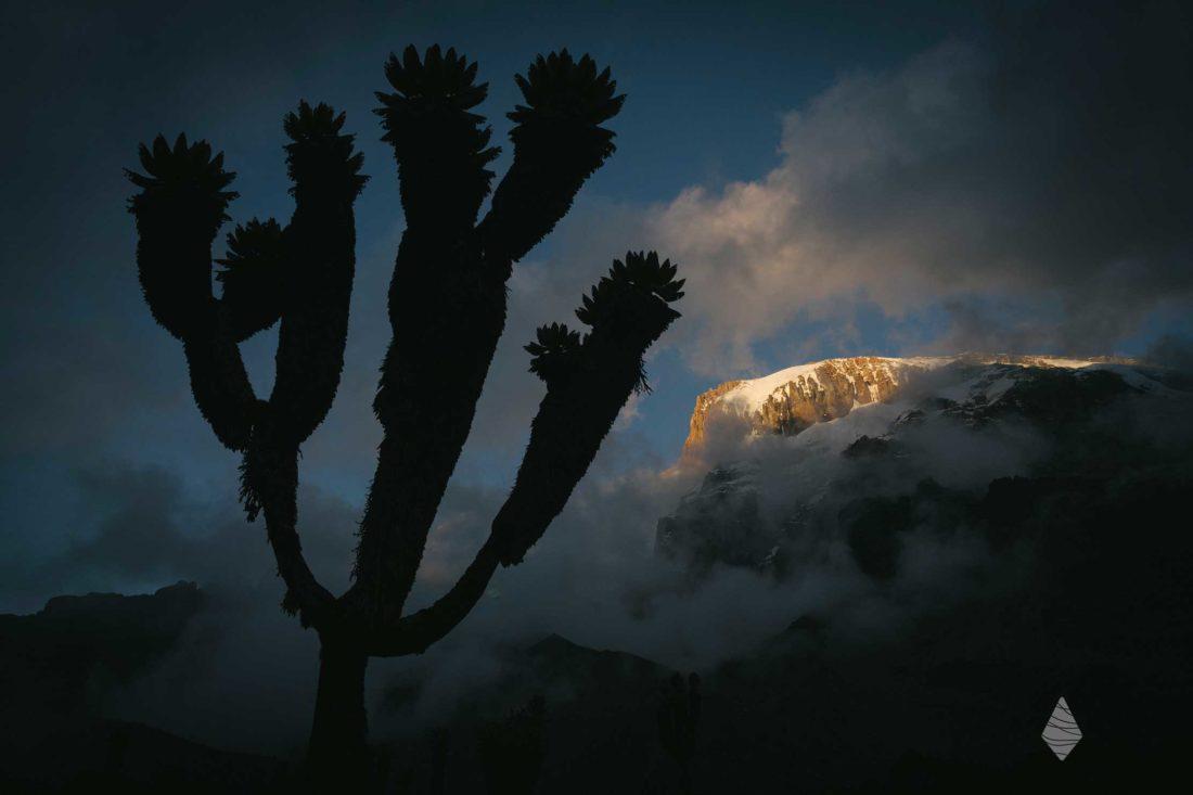 Photo d'un coucher de soleil sur le Kilimandjaro